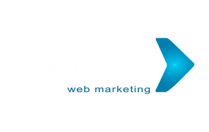 Flybizz Digital Marketing Agency - Marketing Digital - SEO - E-Commerce - Design Gráfico - Social Media - Publicidade